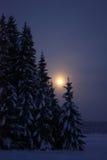 乡下夜间月出冬天 库存照片