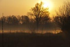 乡下有雾的日落 库存照片