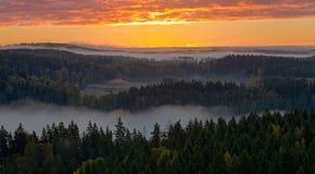 乡下有雾的视图 免版税库存图片