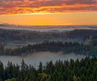 乡下有雾的视图 免版税库存照片