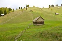 从乡下的春天风景 免版税库存照片