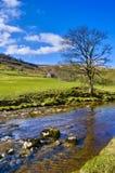 乡下美丽如画的河 库存图片