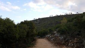 乡下足迹,向小山的路 免版税库存照片