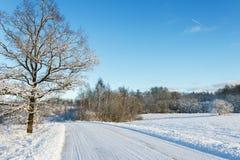 乡下路在一个冬天 库存照片
