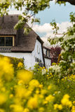 乡下路的春天视图有农厂房子的下面的 库存图片
