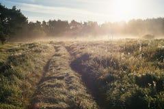 乡下轨道在有雾和晴朗的早晨之前 免版税库存图片