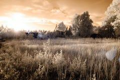 乡下领域和森林 红外图象 免版税库存照片