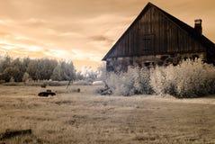 乡下领域和森林 红外图象 免版税库存图片