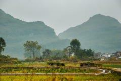 乡下风景在秋天 库存图片