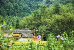 乡下风景在秋天 免版税图库摄影