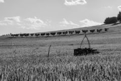 乡下黑白风景在意大利的马尔什地区 免版税图库摄影