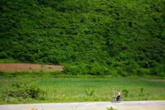乡下,北朝鲜 图库摄影