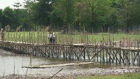 乡下,竹子,柬埔寨 股票录像