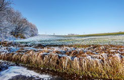 乡下结冰的领域 库存图片