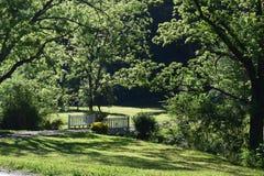 乡下绿叶围拢的汽车桥梁 库存图片