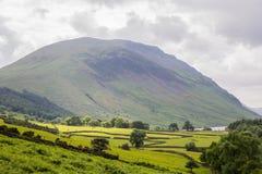 乡下cumbria地区英国湖吃草绵羊春天英国 库存图片