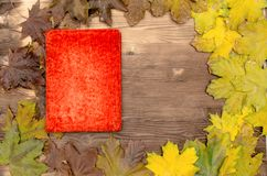 乡情概念 回忆录 与拷贝空间的葡萄酒老象册书 库存图片