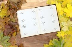 乡情概念 回忆录 打开葡萄酒与空白页的象册书与拷贝空间 免版税库存照片