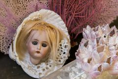 乡情系列-古色古香的玩偶头和海壳静物画 免版税库存图片