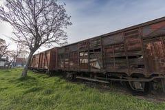 乡愁火车停放了在访客的Haydarpasa驻地,伊斯坦布尔,土耳其 3月` 2017年 免版税库存图片