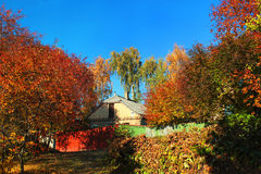 乡间别墅在秋天阳光下作为叶子转动桔子 免版税库存图片