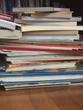 书、书和更多书 库存图片