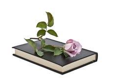 书位于的粉红色上升了 库存图片