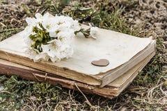 书和枝杈有樱花的 免版税库存图片