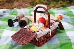 书和篮子用食物在格子花呢披肩在公园去野餐 免版税库存图片