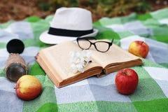 书和篮子用食物在格子花呢披肩在公园去野餐 库存照片