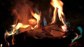 书在火烧 股票录像