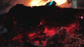书在火烧 影视素材