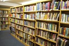 书坐在图书馆里面的一个书架 免版税库存照片
