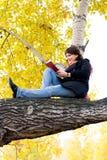 书女孩读取坐的结构树 免版税库存照片