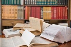 书房子图书馆 免版税库存图片