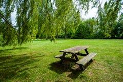 书桌和长凳在公园 库存图片
