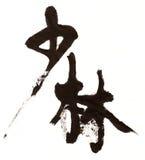 书法中国人shaolin 皇族释放例证
