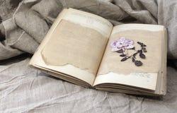 书的干燥标本集 免版税库存图片