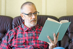 读书的老人 免版税库存照片