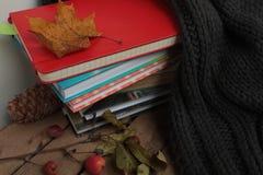 书,围巾,在一张木桌上的秋天莓果 库存照片