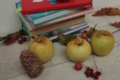书,围巾,苹果,在一张木桌上的秋天莓果 免版税库存照片