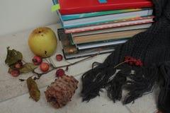 书,围巾,苹果, pinecone,在一张木桌上的莓果 库存图片