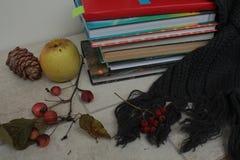 书,围巾,苹果, pinecone,在一张木桌上的莓果 免版税库存照片