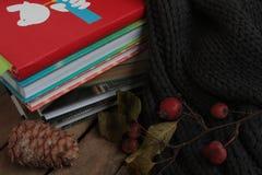 书,围巾, pinecone,在一张木桌上的莓果 图库摄影