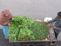 买阔叶蔬菜的夫人 免版税图库摄影