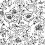 乱画在传染媒介的花卉背景与乱画黑白上色页 库存照片