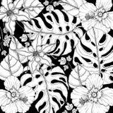 乱画在传染媒介的花卉背景与热带花乱画黑白上色页  免版税库存图片