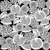 乱画在传染媒介的花卉背景与石榴乱画黑白上色页  库存照片