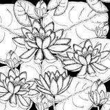 乱画在传染媒介的花卉背景与荷花乱画黑白上色页  免版税库存照片