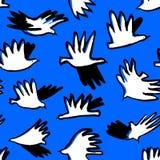 乱画鸟无缝的样式 与滑稽的飞行美洲黑杜鹃的背景 库存图片